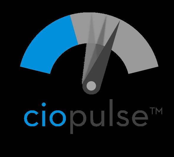 CIO Pulse