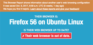 Example Browser Report - Firefox on Linux