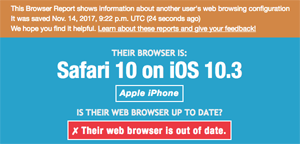 Example Browser Report - Safari on iOS