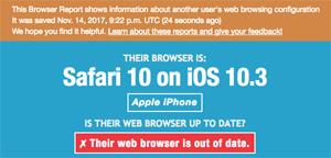 Example Browser Report - Safari on iOS