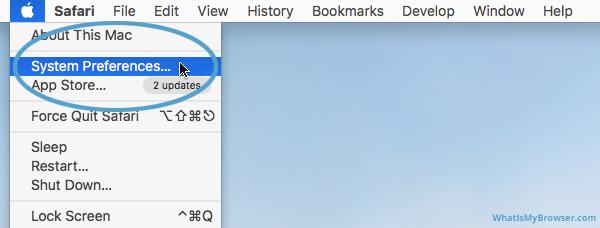 Screenshot of the System Preferences menu item