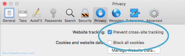 The contents of the Safari Privacy tab.