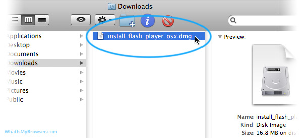 The Downloads folder, showing the newly downloaded installer file