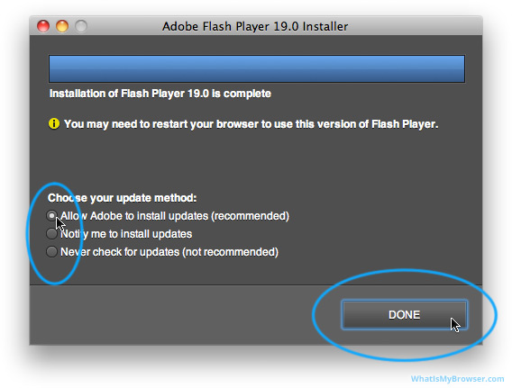 The installer prompts you to choose your Auto-updates option