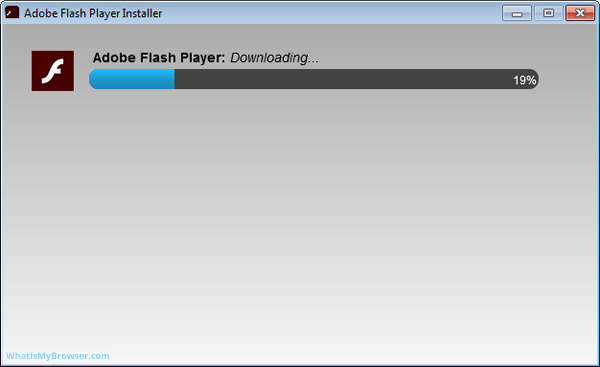 The installer is downloading Adobe Flash