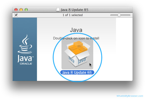 The Java installer inside the DMG.