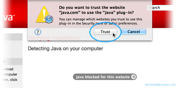 Do you want to trust the website 'java.com' to use the 'Java' plug-in?